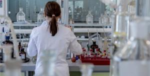 Jatropha laboratorio